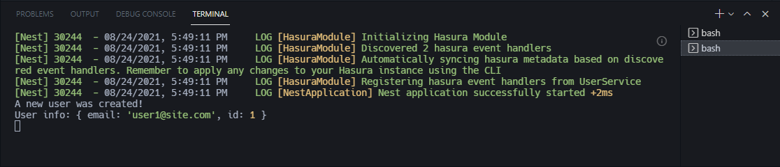 user1-created-in-nest-console-output